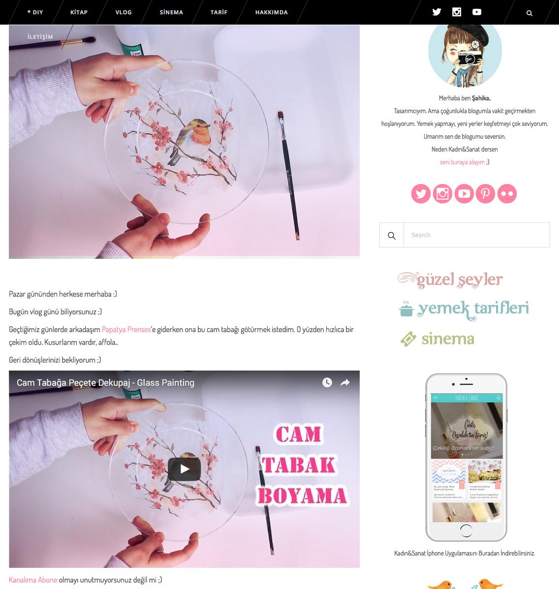 WordPress'de YouTube videolarının düzgün görüntülenmesi için plugin: Fluidvids